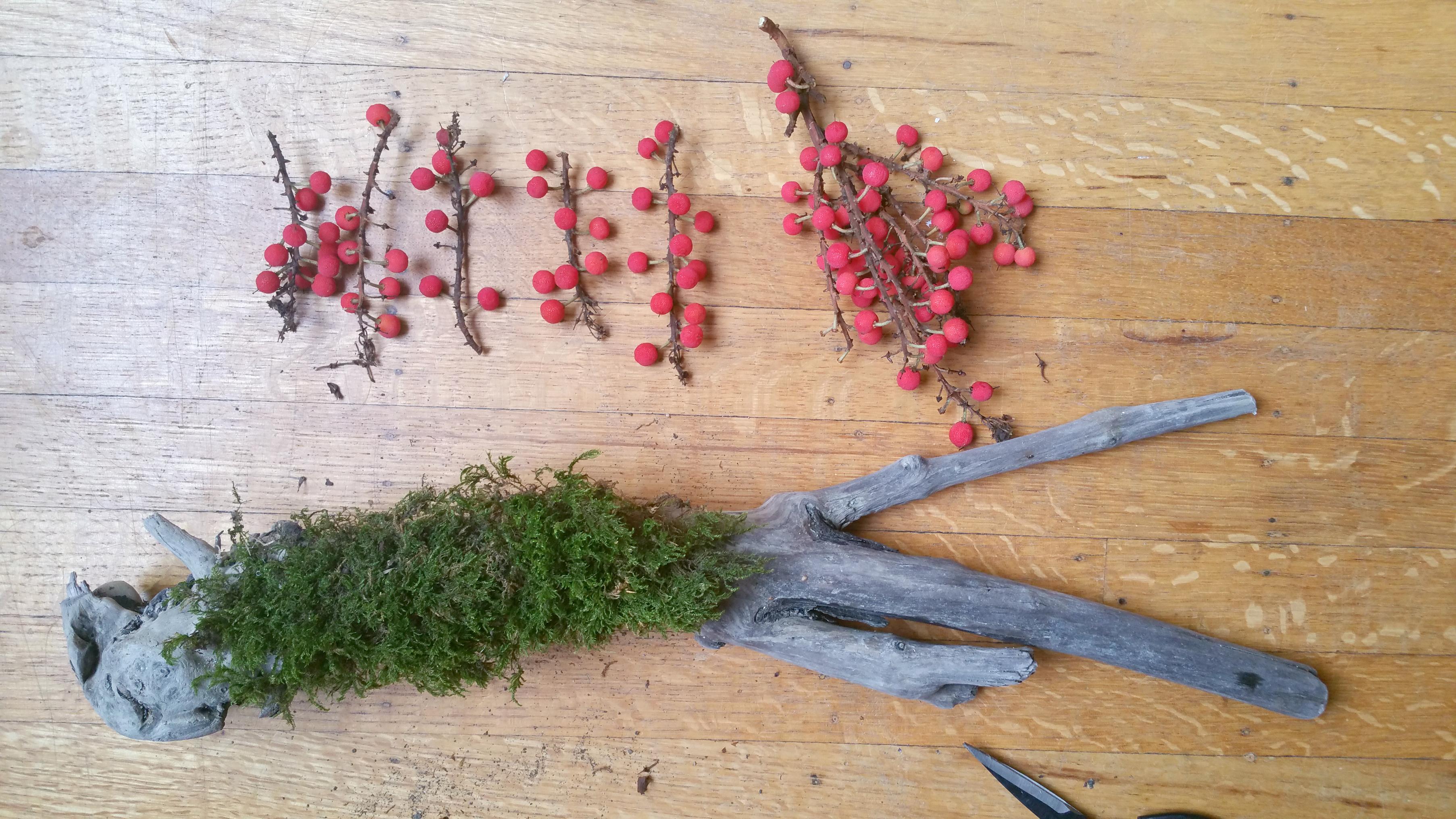 berries, moss, driftwood DIY